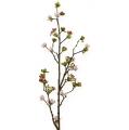 Kirschblütenzweig Rosa 95cm